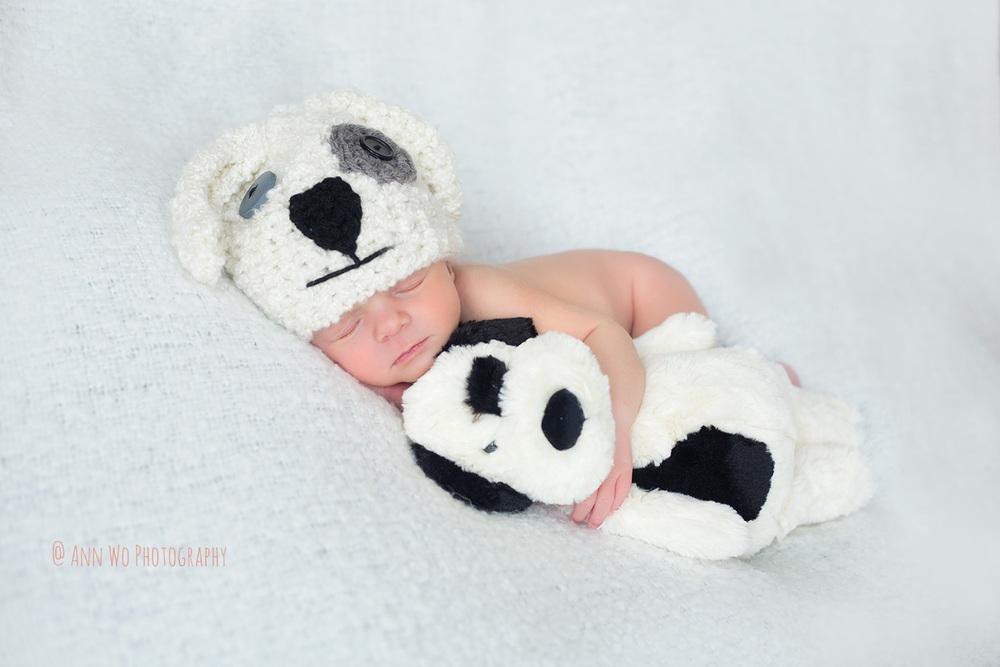 newborn photography baby in white puppy hat