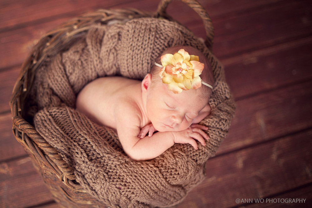 newborn-photo-shoot-at-home-london-uk-ann-wo-basket