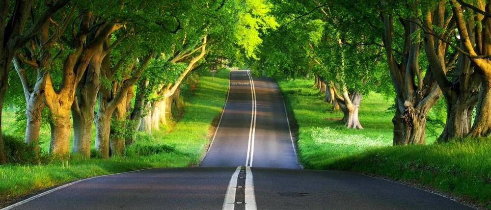 green-road-1024x768-wallpaper-3774.jpg