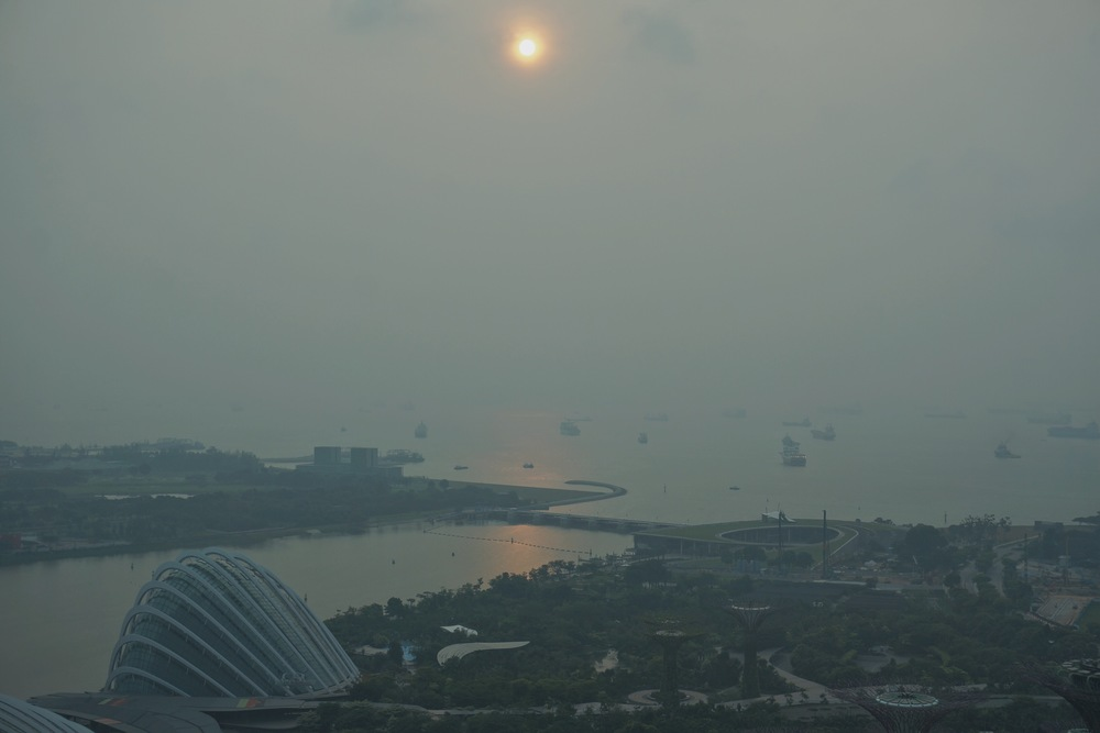 Just came back from Singapore, a beautiful, strange and oneiric place.