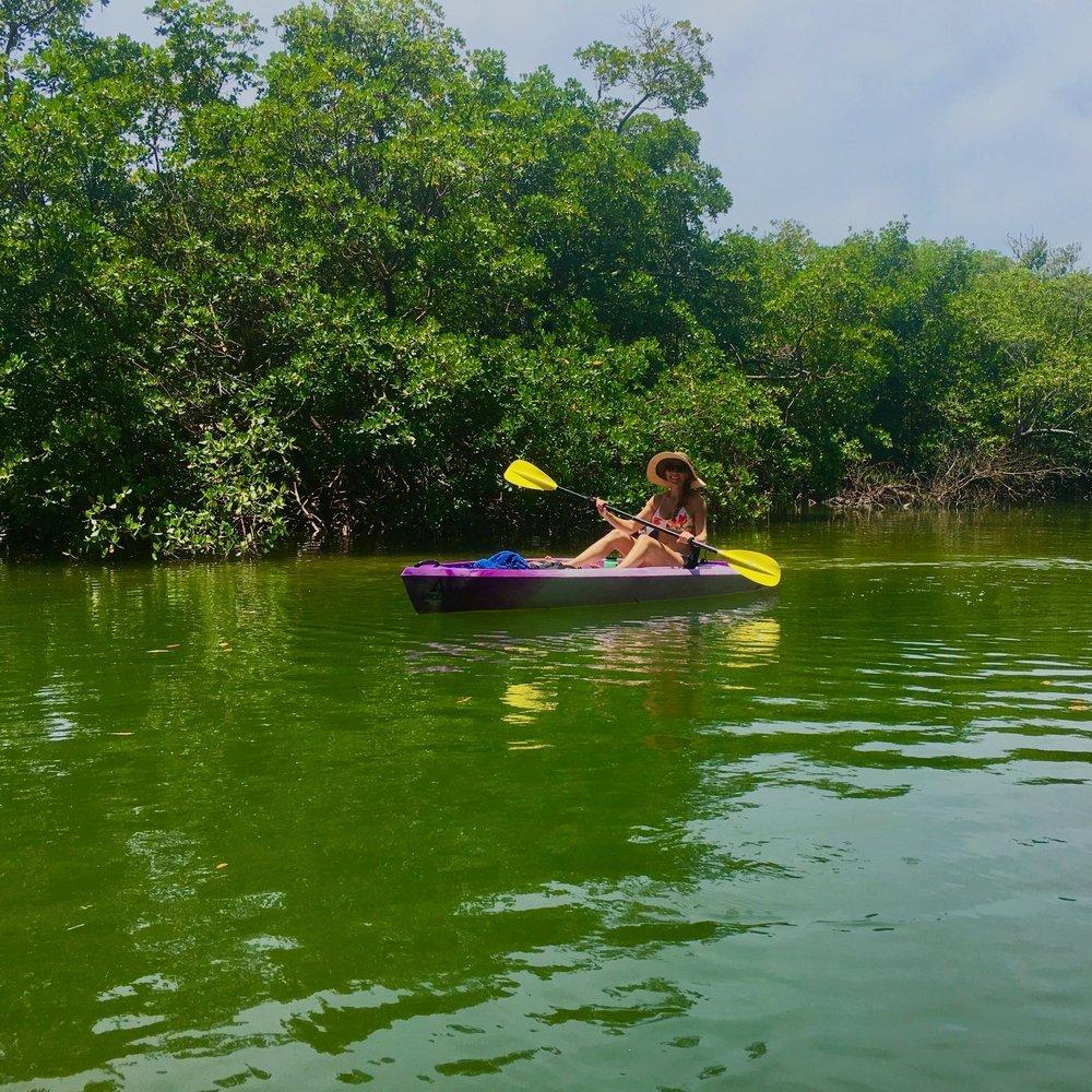 Eco Endeavors Kayak Rentals