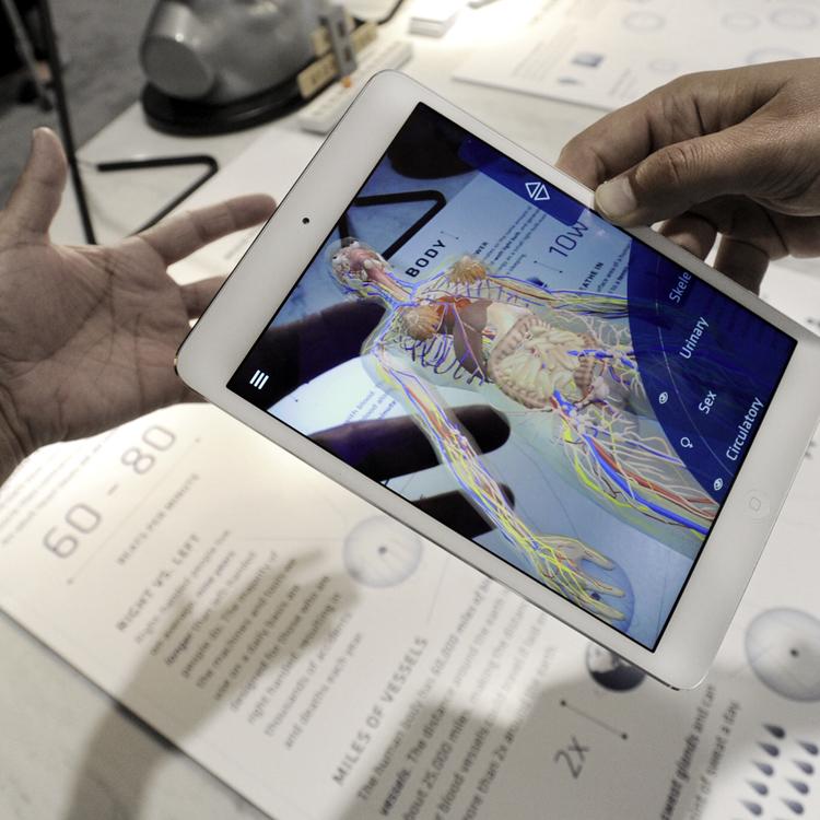 Augmented World Expo Will M Lipman