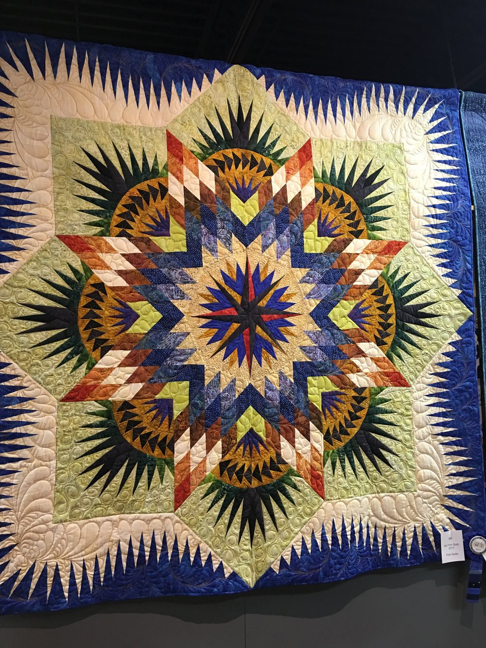 1st Place First Quilts: My First Quilt entered by David Surette