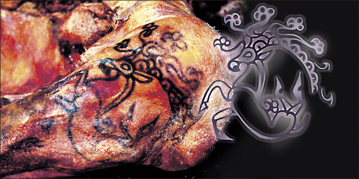 Tattoo on the mummified body of the Siberian Ice Maiden, image courtesy of the Siberian Times.