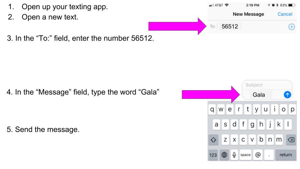Gala Messaging-4.jpg