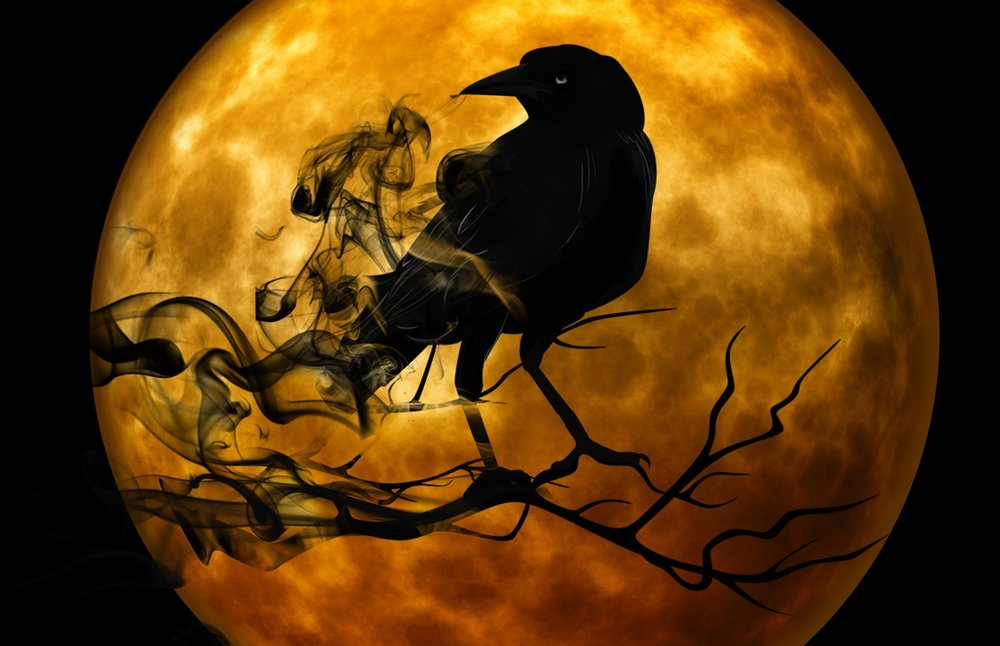 One of the games played during Samhain is the chasing of crows. The direction of the crows and how many could tell you things about the future.