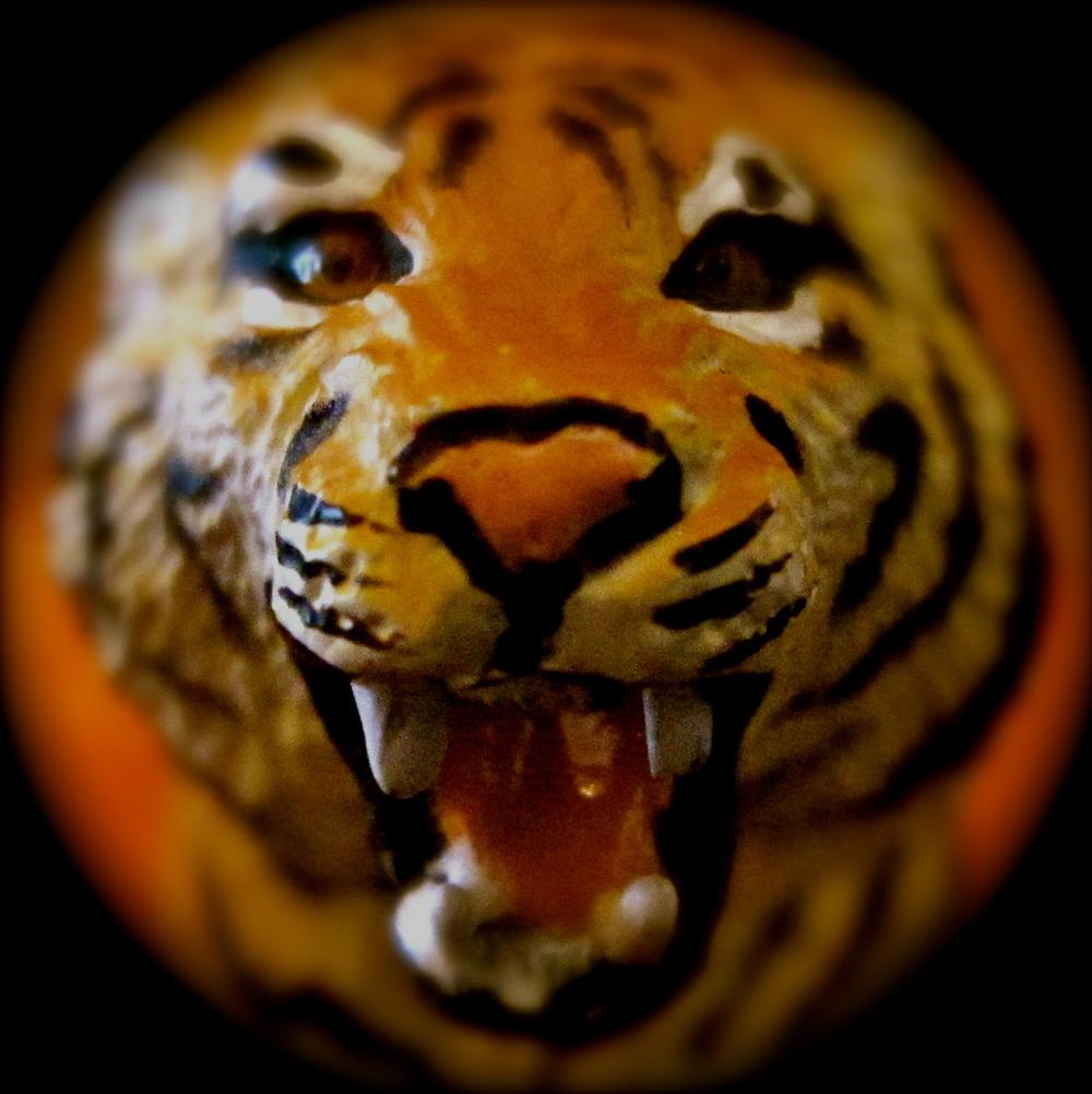 http://en.wikipedia.org/wiki/Tiger
