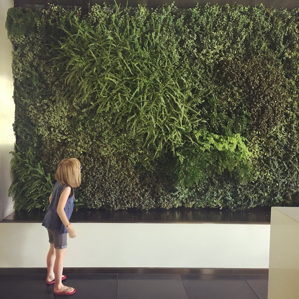 Afterward, we parked in the garage of my workplace building downtown, which was near our next destination. Each time she's here, Squish gets distracted by the wall o' plants in the building's lobby.