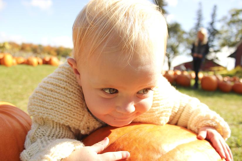 pumpkinfarm-4