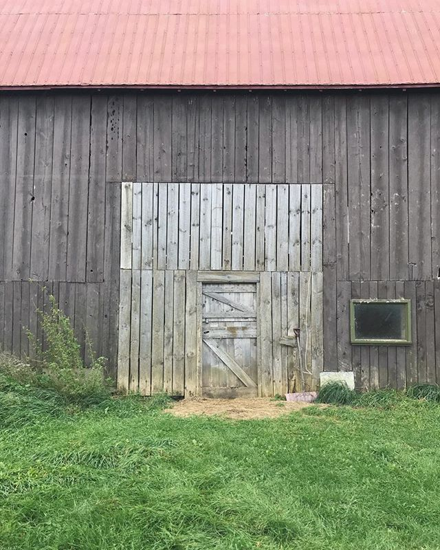 Pretty place to be working for the day.  #princeedwardcounty #ontario #barndoor