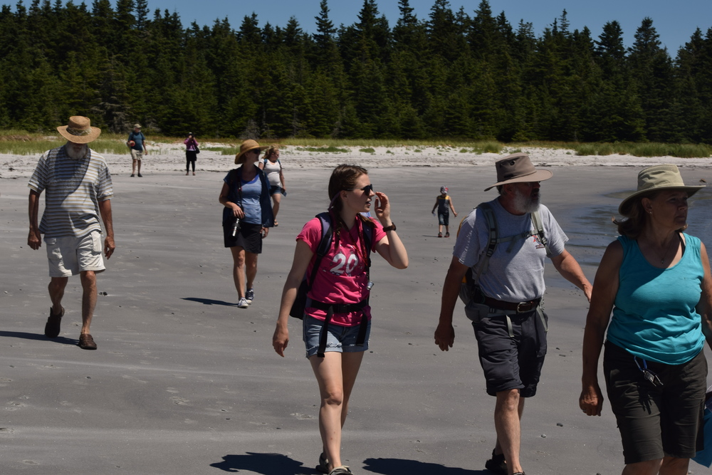 Wild Wednesday (Tidal pool) group walking to the tidal pools.