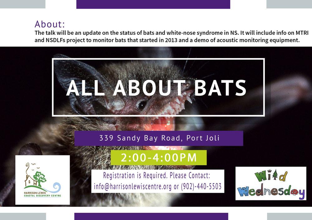 All-About-Bats.jpg