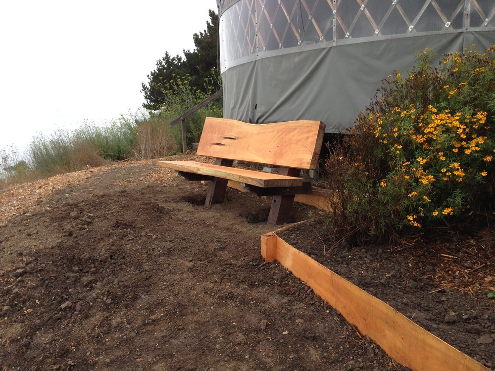 Cypress Slab Bench