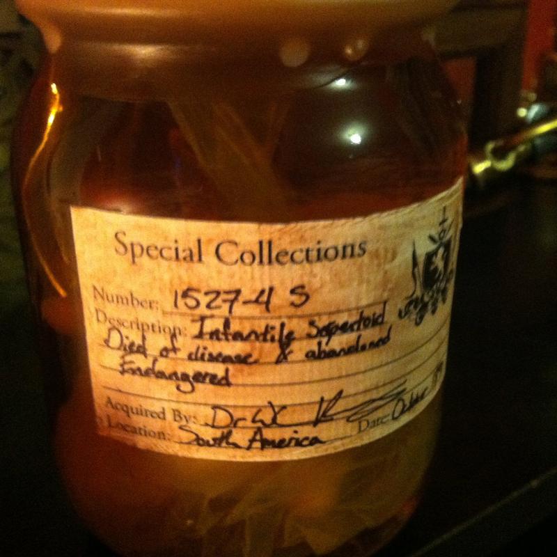 specimen1.jpg
