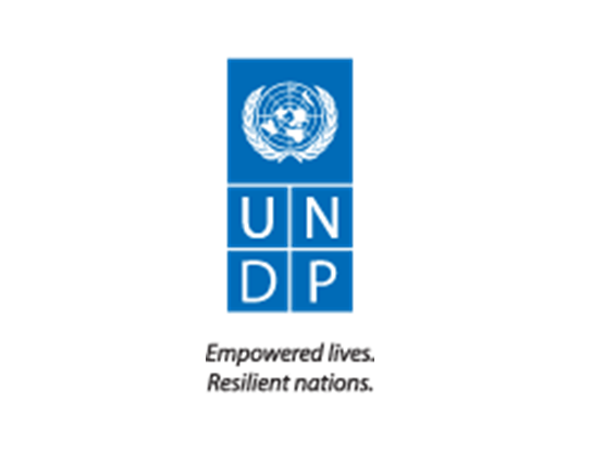 UNDP Final.png