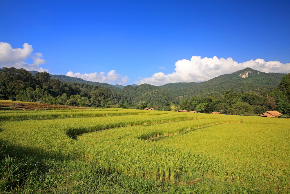 Beautiful Mae Hong Son Landscape