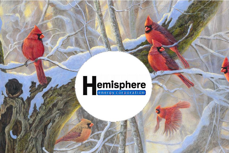 cardinalsHMEmedium.jpg