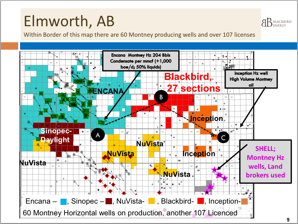 Source: Blackbird Presentation April, 2014