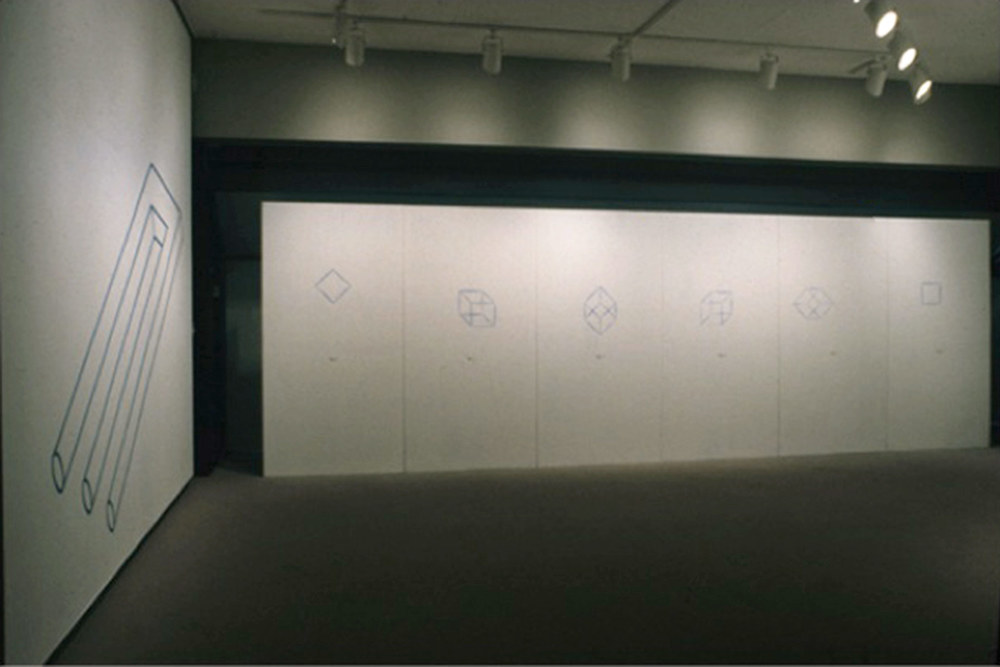 Installation view of  fig. 8  presented in  Perceptions/Conceptions , a Department of Art & Design faculty exhibition organized by Jetske Sybesma in 2000, in the Fine Art Building Gallery, Edmonton, Alberta, Canada.