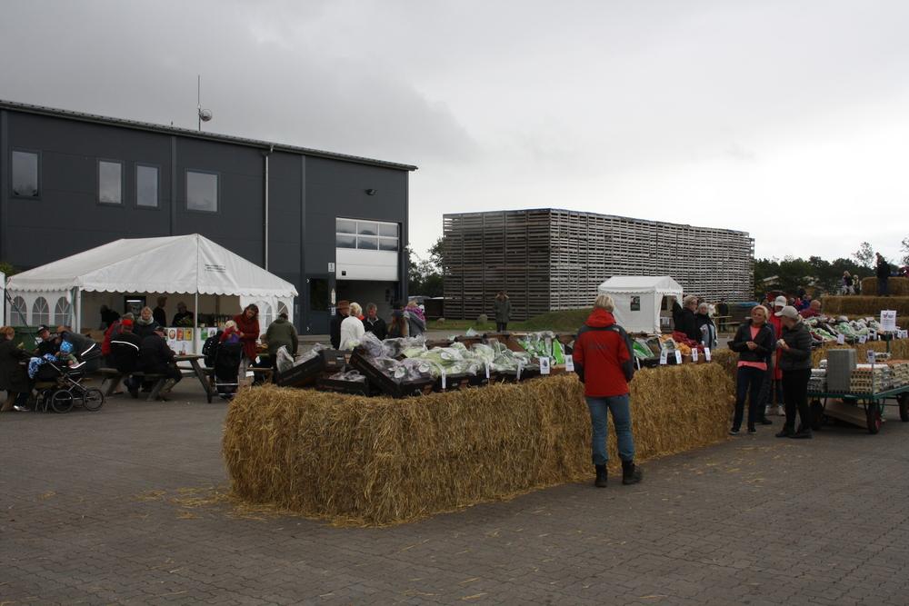 Åbent landbrug 2013 007.JPG
