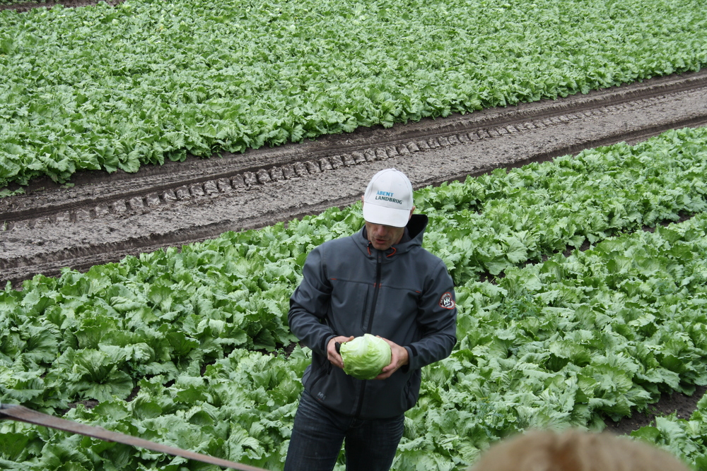 Åbent landbrug 2013 022.JPG