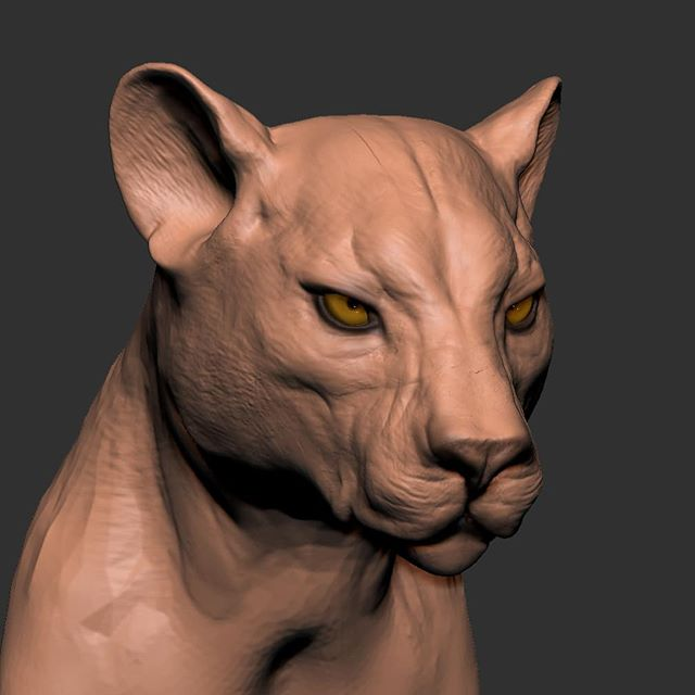 First post of 2019. And first entry for #sculptityourself ! Quick 1 hour sketch for Feline January