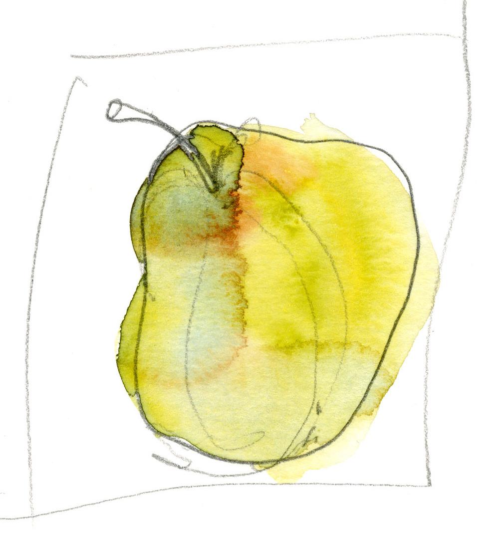 9-27-2014 Pear Still Life 004.jpg