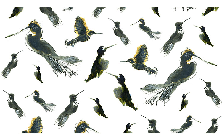 Hummingbird Pattern.jpg