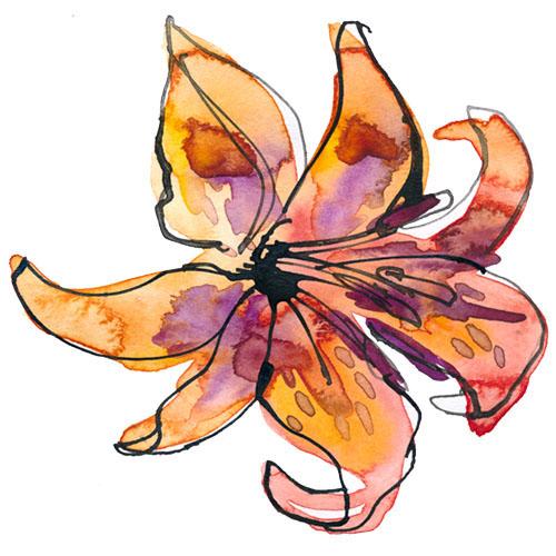 Virgo - Lily.jpg