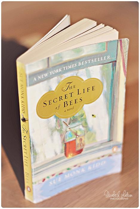 ELP.booknook.secretlifeofbees