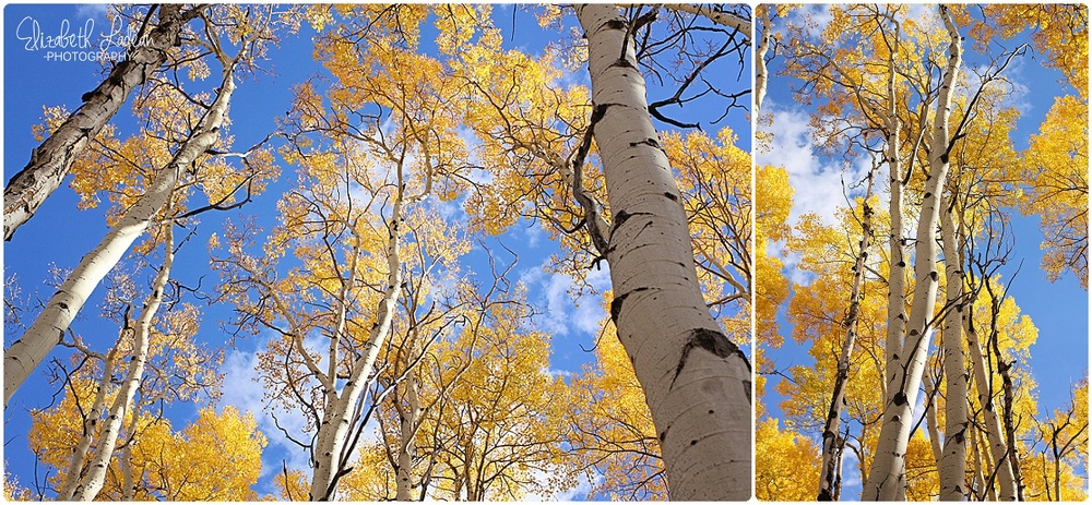 Colorado - Aspen Grove in Dillion Valley_0030.jpg