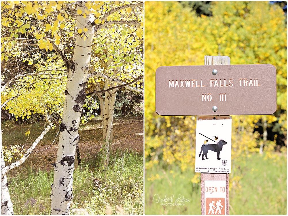 Colorado - Maxwell Falls_0049.jpg