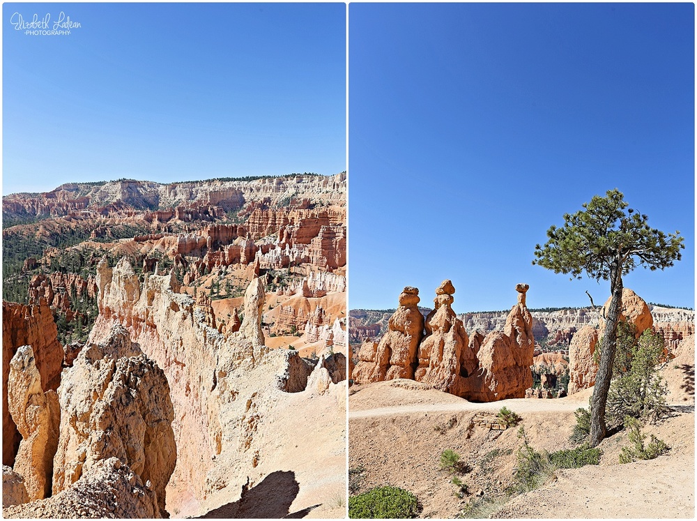 Bryce Canyon National Park_B&Wtravel_1683.jpg