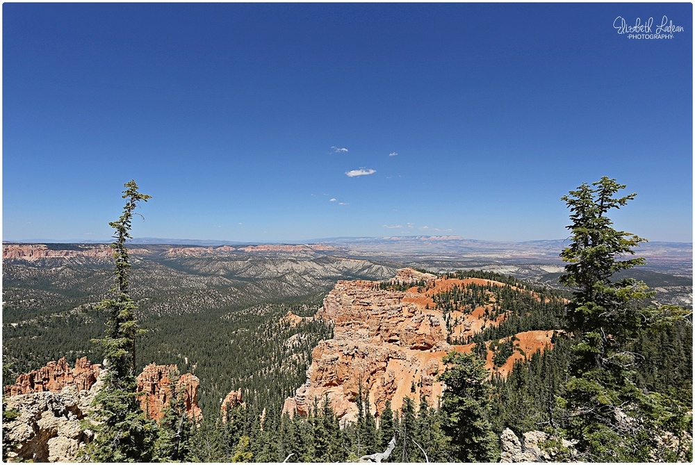 Bryce Canyon National Park_B&Wtravel_1694.jpg