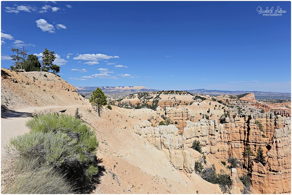 Bryce Canyon National Park_B&Wtravel_1702.jpg