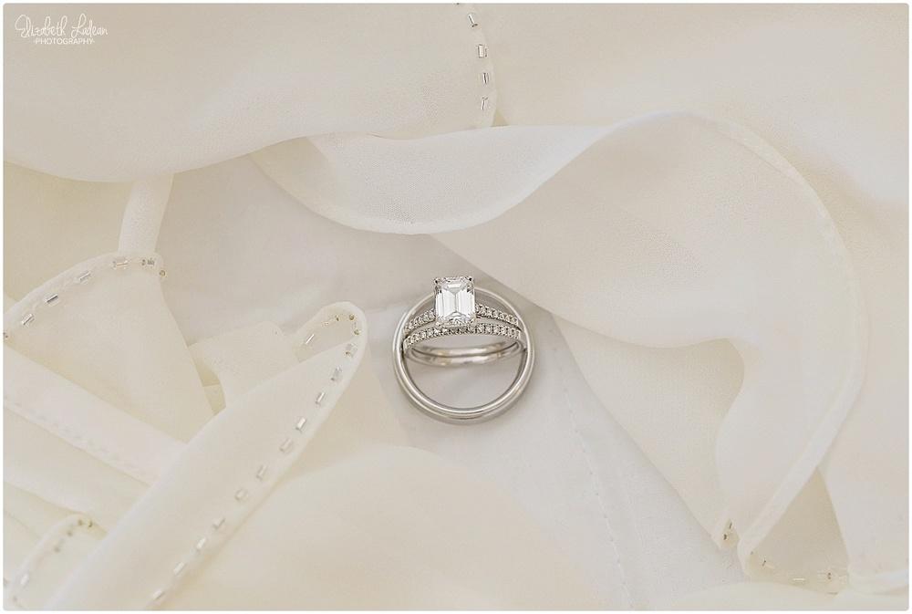 Kansas City Wedding Photography-Elizabeth Ladean-R&B_Nov2015_2985.jpg