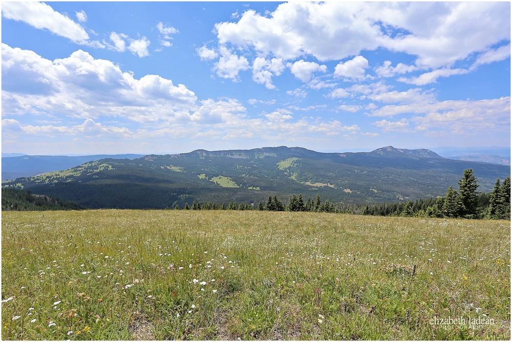 Colorado-Silverthorne-ElizabethLadeanPhotography--_6042.jpg