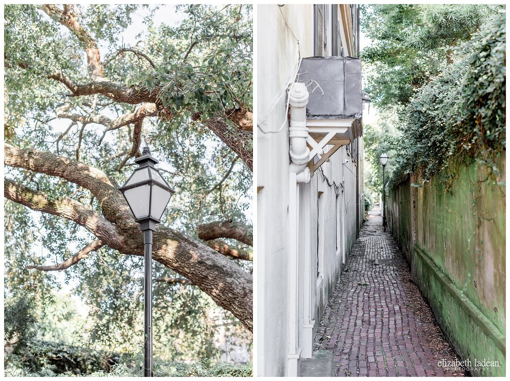 Exploring-Charleston-SC-on-foot-2017-Elizabeth-Ladean-Photography-photo-_3984.jpg