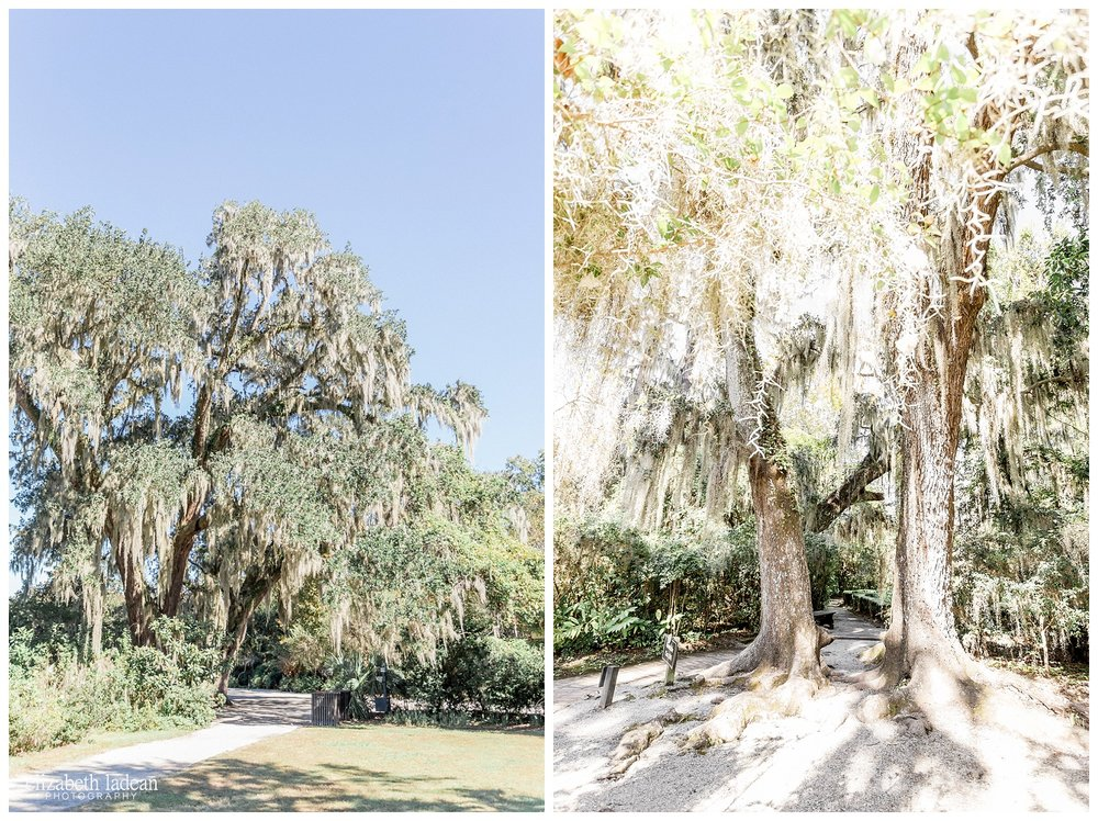 Exploring-Charleston-SC-on-foot-2017-Elizabeth-Ladean-Photography-photo-_4019.jpg