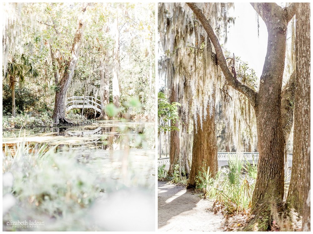 Exploring-Charleston-SC-on-foot-2017-Elizabeth-Ladean-Photography-photo-_4021.jpg