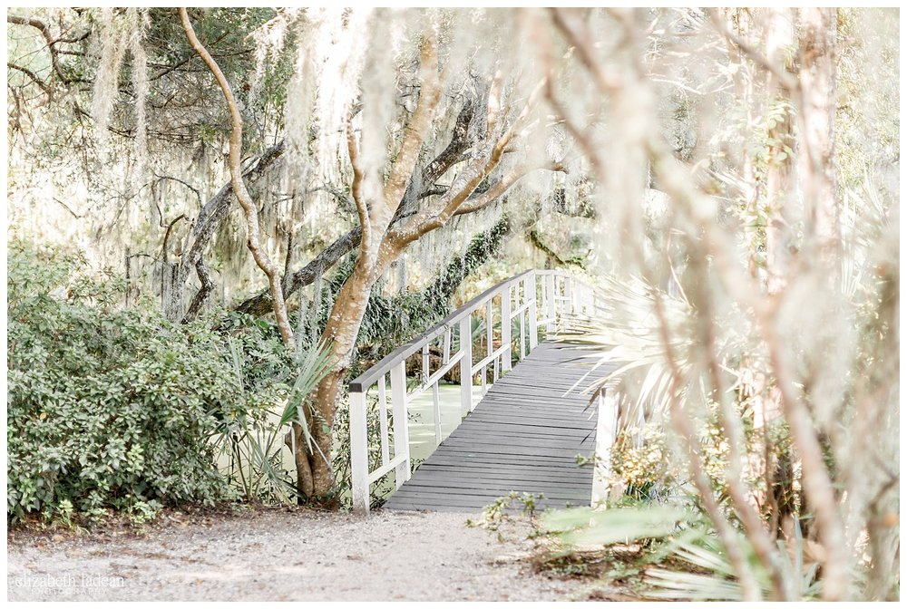 Exploring-Charleston-SC-on-foot-2017-Elizabeth-Ladean-Photography-photo-_4023.jpg