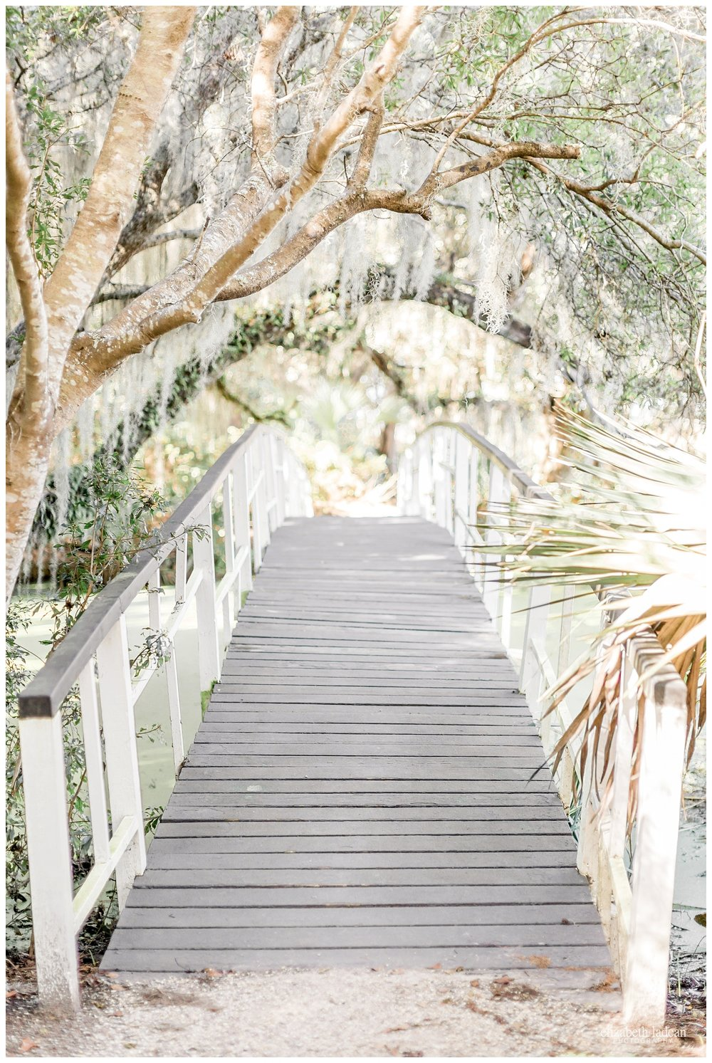 Exploring-Charleston-SC-on-foot-2017-Elizabeth-Ladean-Photography-photo-_4027.jpg