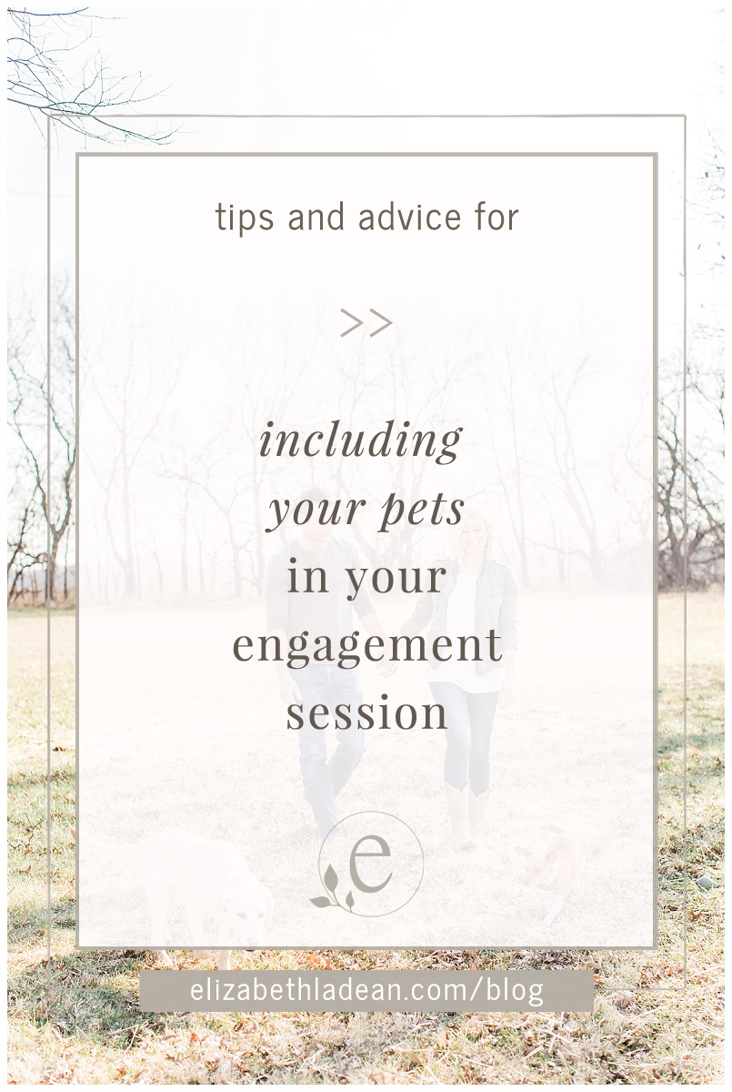 Tips-for-including-dog-at-engagement-session-BLOGTN.jpg