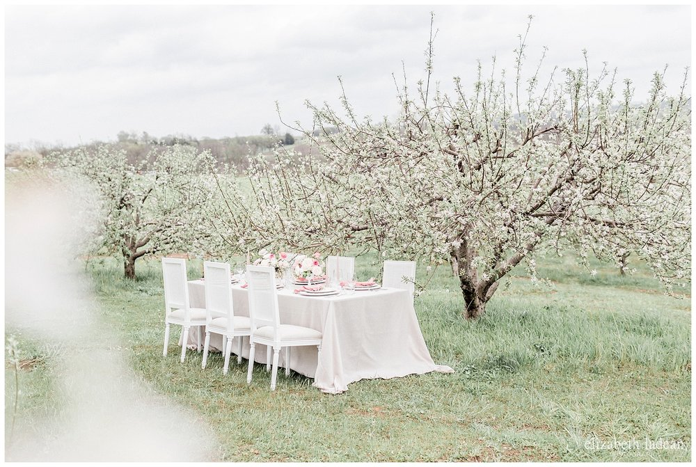 Apple-Blossoms-Springtime-Wedding-Inspiration-Weston-Red-Barn-2018-elizabeth-ladean-photography-photo-_7158.jpg