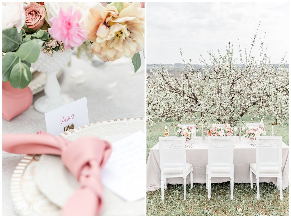 Apple-Blossoms-Springtime-Wedding-Inspiration-Weston-Red-Barn-2018-elizabeth-ladean-photography-photo-_7161.jpg