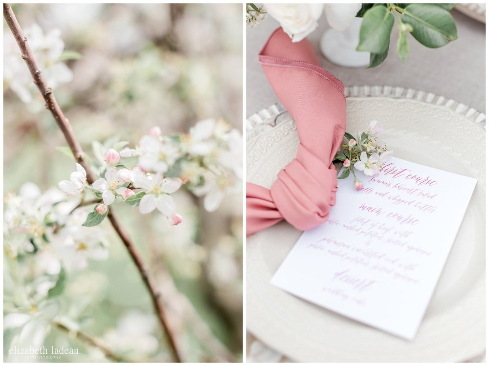 Apple-Blossoms-Springtime-Wedding-Inspiration-Weston-Red-Barn-2018-elizabeth-ladean-photography-photo-_7176.jpg