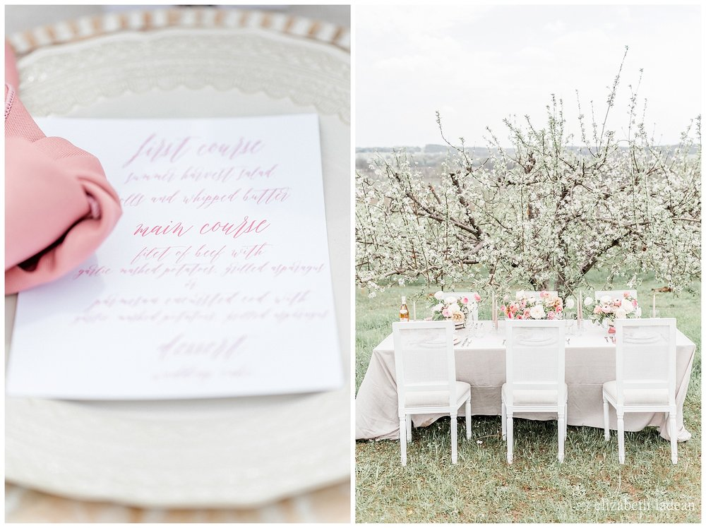 Apple-Blossoms-Springtime-Wedding-Inspiration-Weston-Red-Barn-2018-elizabeth-ladean-photography-photo-_7175.jpg