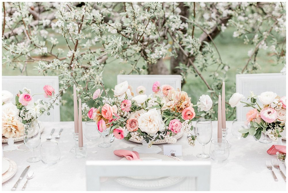 Apple-Blossoms-Springtime-Wedding-Inspiration-Weston-Red-Barn-2018-elizabeth-ladean-photography-photo-_7178.jpg