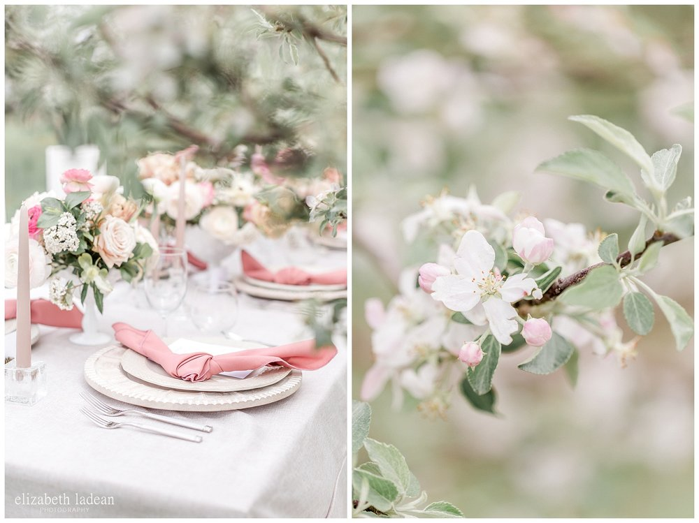 apple orchard wedding photography