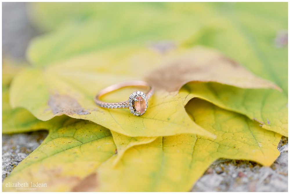 Northland-KC-Fall-Engagement-Photos-with-dog-A+B-2018-elizabeth-ladean-photography-photo_1500.jpg